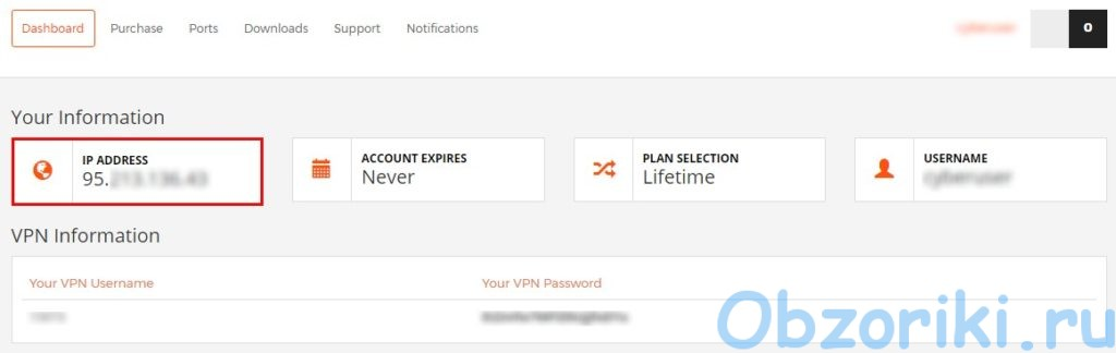 RA4W VPN Panel on Site