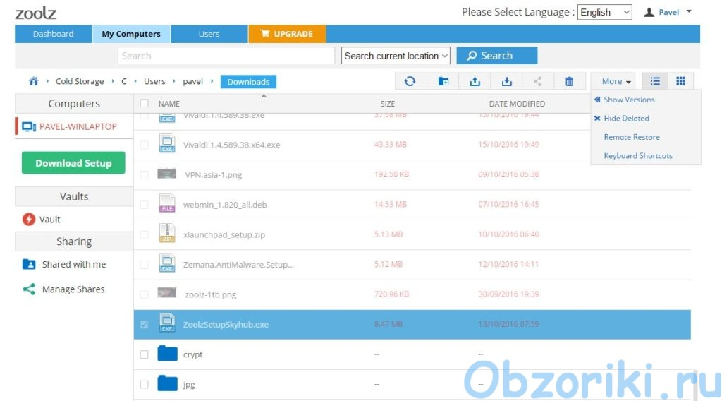 Zoolz Backup Web